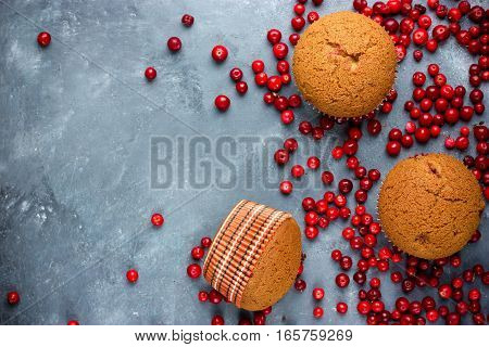 Honey spice muffins with cranberries top view dietary pastry