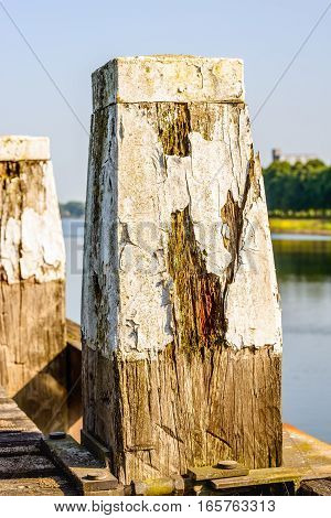 Closeup of a rotten wooden pole with peeling white paint. The pole is part of a dock in a narrow Dutch river.