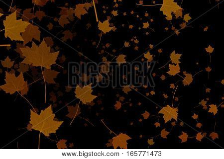 Yellow, Brown, Red Colorful Leaves Autumn Colors Flying On Black Background,  Leaf Fall Season