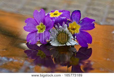 flower arrangement mirrored floats in water glass