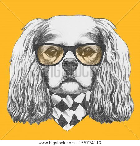 Portrait of Cavalier King Charles Spaniel with glasses and scarf. Hand drawn illustration.