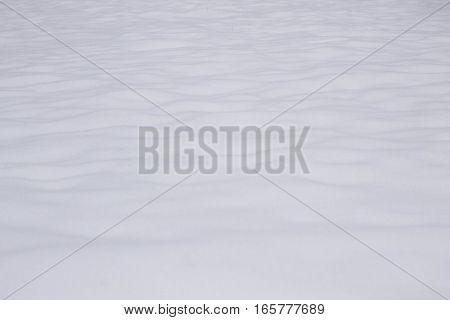 white fresh snow background winter texture, snowflakes