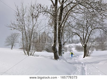 hiker in the snow crossing a wood