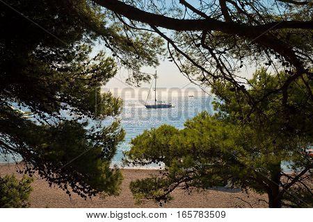 Sailboat at Zlatni Rat beach pine trees on pebble beach Brac island Croatia