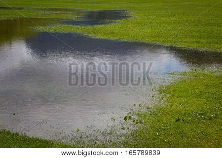 Flooded green patch of land in park