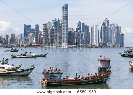 June 15, 2016 Panama City, Panama: pelicans standing on a small fishing boat floating on the water by the fish market with the modern downtown highrise buildings in the background