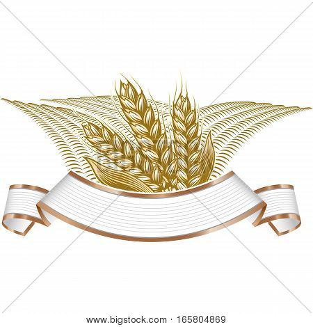 Vintage vector engraving illustration of ripe wheat and wheat field landscape on elegant banner. Farmers market badge with ripe wheat field cereals.