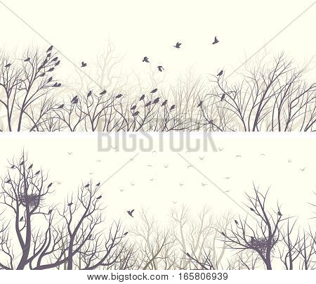 Set of horizontal wide banners of forest with nests in trees and birds.