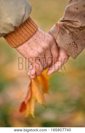 Couple of hands together with leaves on background