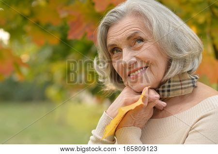 Portrait of a beautiful middle-aged woman on the background of autumn leaves