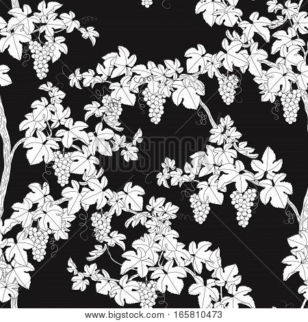 Seamless pattern with grapes. Monochrome branches with leaves and bunches of grape on black background.
