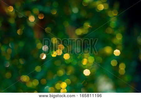 Green blurred background Christmas tree full frame