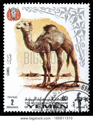 YEMEN - CIRCA 1969 : Cancelled postage stamp printed by Yemen, that shows Camel.