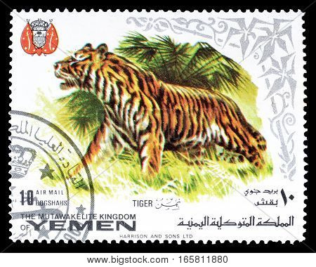 YEMEN - CIRCA 1969 : Cancelled postage stamp printed by Yemen, that shows Tiger.