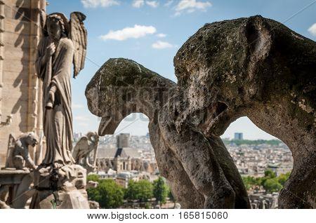 Chimera and statues of Notre Dame de Paris