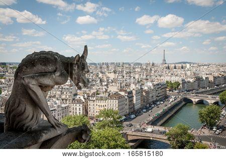 Chimera of Notre Dame de Paris over the city view