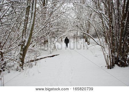 Walking person on a footpath in a forest with snow all over