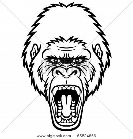 A Gorilla head logo. This is vector illustration ideal for a mascot and tattoo or T-shirt graphic.