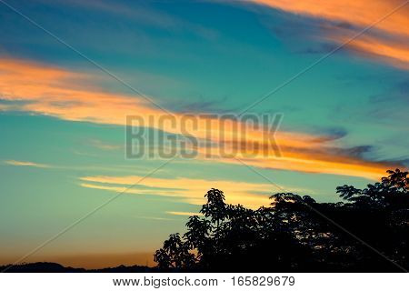 Sunset; landscape; forest; clouds; sky; light; evening; evening; por do sol; paisagem; floresta; nuves; céu; luz; noite; tarde; entardecer