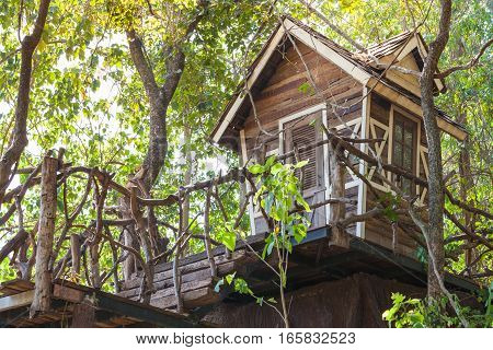 The old small wooden house in forest