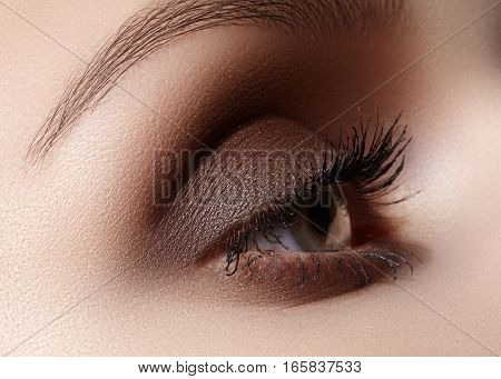 Beautiful macro shot of female eye with classic smoky makeup. Perfect shape of eyebrows brown eyeshadows and long eyelashes. Cosmetics and make-up. Closeup macro shot of fashion smoky eyes visage
