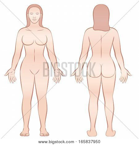 female, body, woman, front, back, view, illustration, anatomy, naked, nude, silhouette, biology, health, medicine, figure, medical, fitness, mannequin, white, background, model, skin, healthcare, bare, healthy, standing, isolated, vector, beauty, proporti