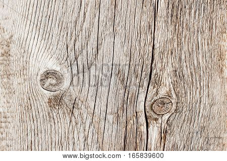 Close-up natural old wood weathered board texture with crack lines, curves, swirls. Aged surface. Natural grunge background, weathered profile