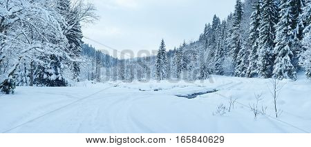 Winter Landscape. Frosty Trees Covered By Snow