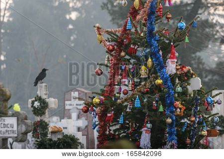 Bucharest Romania December 25 2009: A grave is decorated with a Christmas tree in a cemetery in Bucharest.