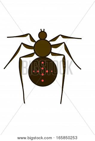 The brown spider on a white background.
