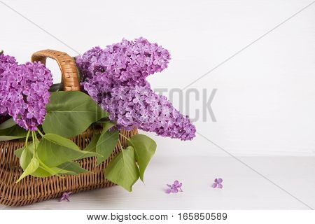 Bouquet Of Lilac In Wicker Basket On White Background