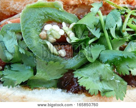 This is a close up view of a Vietnamese banh mi sandwich showing off the cilantro and sliced jalapeno peppers with seeds