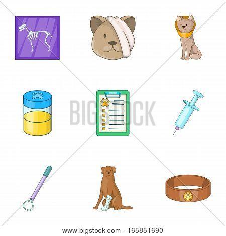 Pet veterinary clinic icons set. Cartoon illustration of 9 pet veterinary clinic vector icons for web