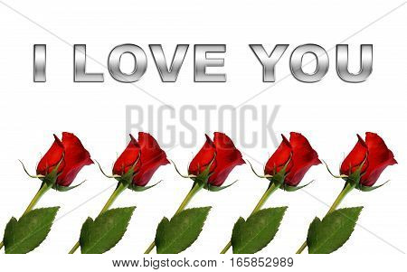 red roses isolated on white background with words I love you