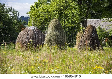 close-up of haystacks in the country meadow