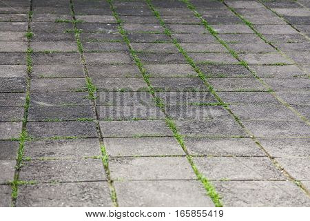 Cobble stone road with green grass as texture