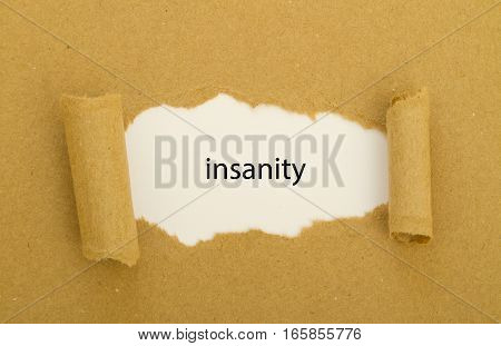 insanity word written under torn paper .