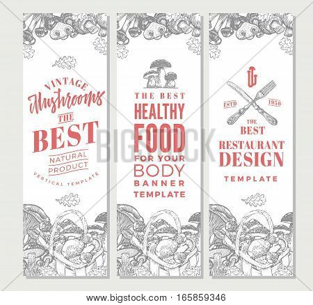 Sketch organic food vertical banners with different kinds of edible mushrooms vector illustration