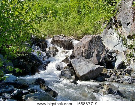 Rushing river flowing down from Alaska mountain top. Beautiful hike by flowing creek with big rocks and green leaves