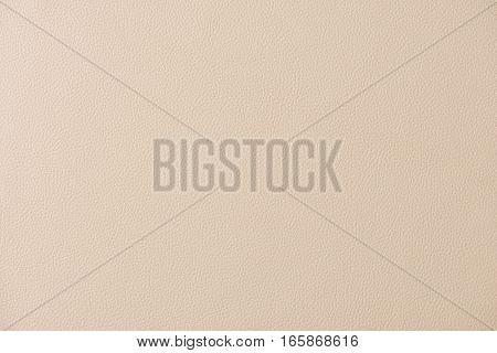 White Leather Swatch Section