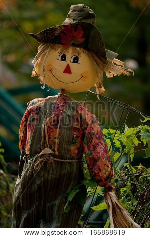 Cute little scarecrow protecting his crops at the end of summer