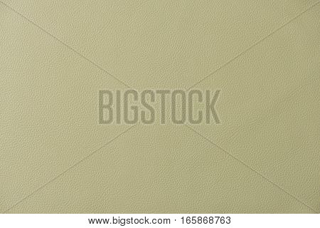 Tan Leather Swatch Section