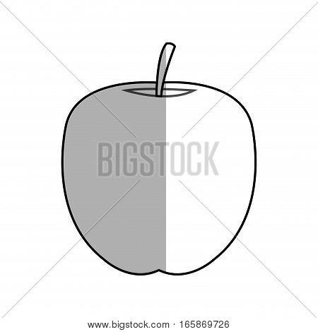 apple fruit icon over white background. vector illustration