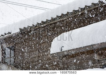 Wooden building piled heavy snow in winter