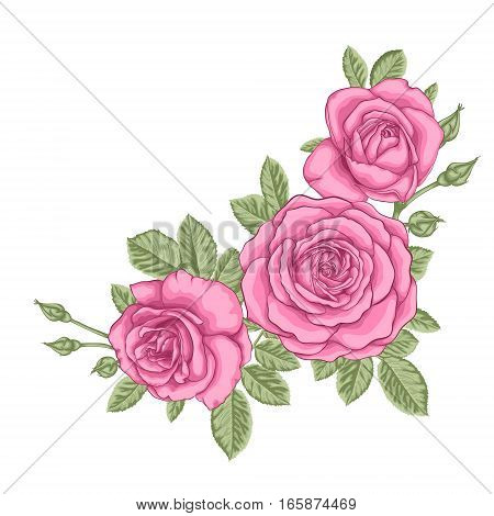 beautiful bouquet with three pink roses and leaves. Floral arrangement. design greeting card and invitation of the wedding birthday Valentine's Day mother's day and other holiday.