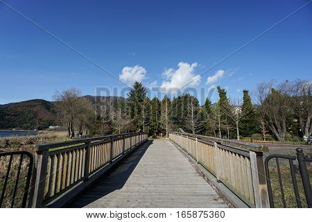 straight wooden walkway in public park in sunny day