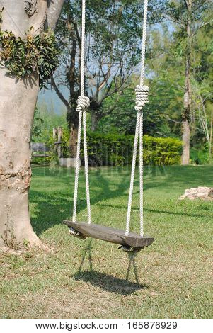 beautiful wooden swing in the garden with tree