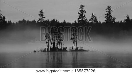 A small island floats over the foggy frozen lake monochrome image dark mood.