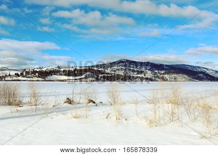 Winter landscape of frozen snow covered lake with tall grass  on shoreline. Bright blue sky and white clouds over mountains in background.