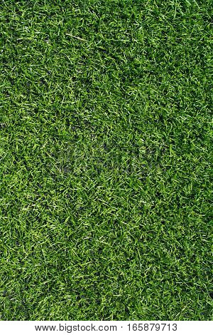 Green soccer field turf texture closeup of ground